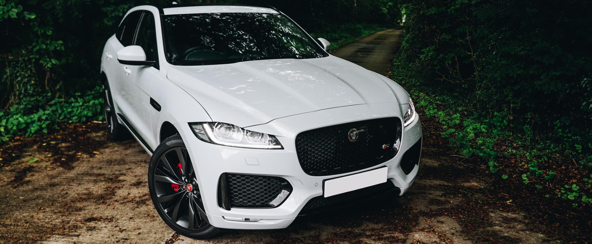 The Jaguar F PACE