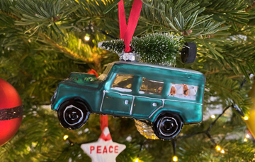 How To Safely Transport Your Tree On Your Car This Christmas