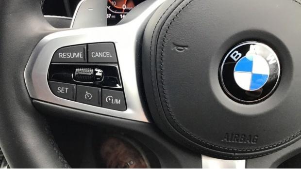 2020 BMW 320i M Sport Saloon (Orange) - Image: 17