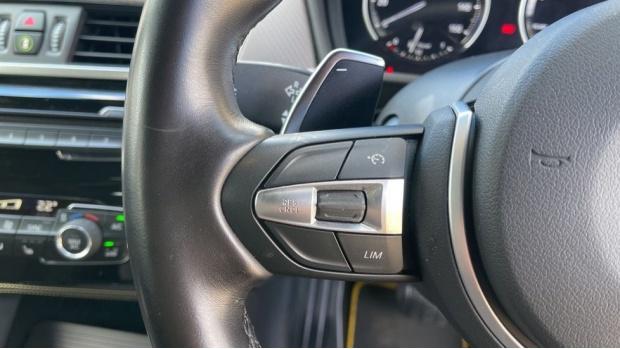 2018 BMW XDrive20d M Sport X (Gold) - Image: 17