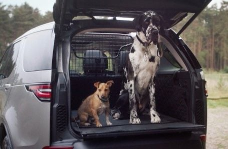 Land Rover Dog Accessories Image 2