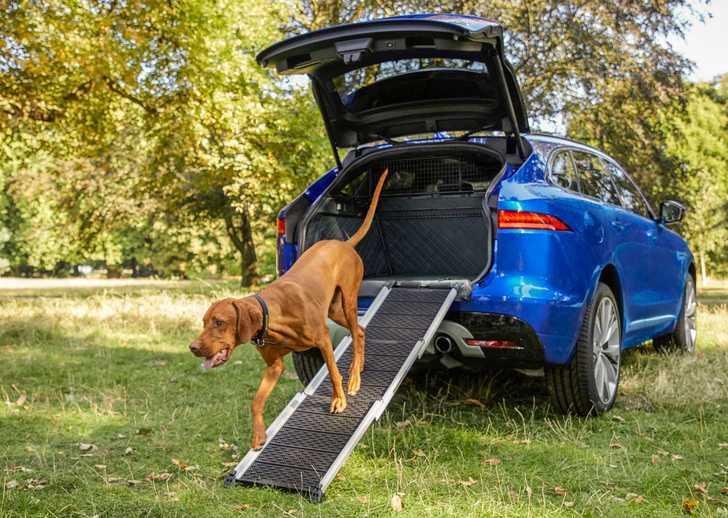 Jaguar Pet Accessories